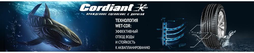 Летние шины Cordiant